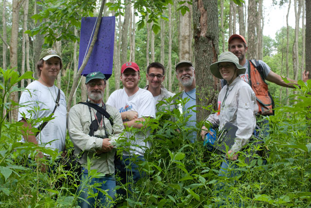 EAB researchers
