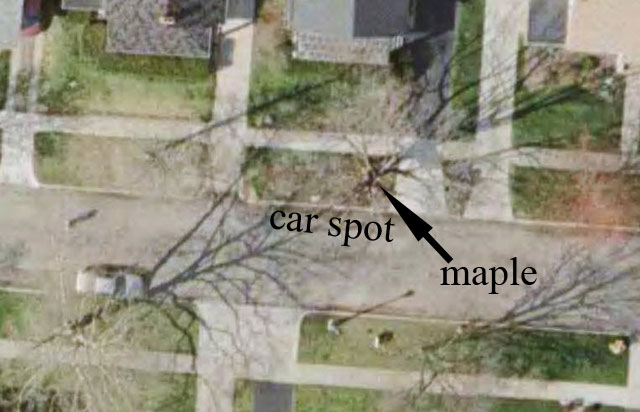 google earth maple view