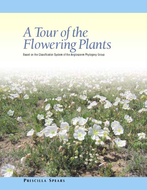 A Tour of the Flwering Plants