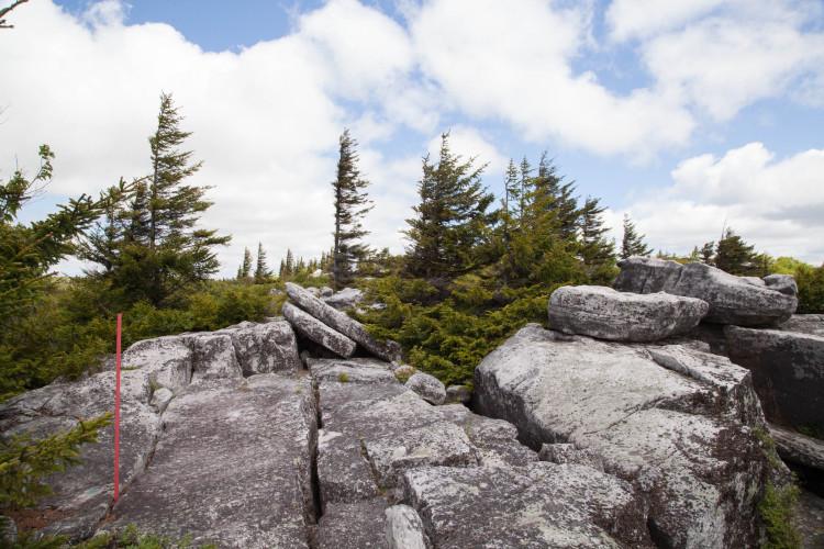 Bear Rocks.