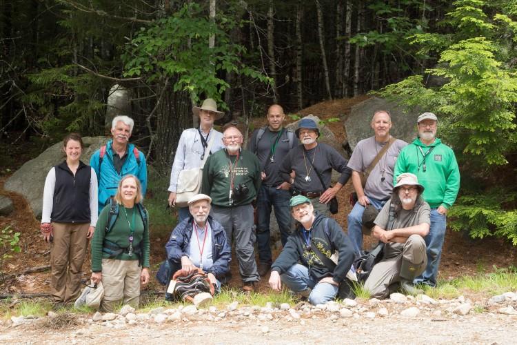 Eagle Hill crustose group