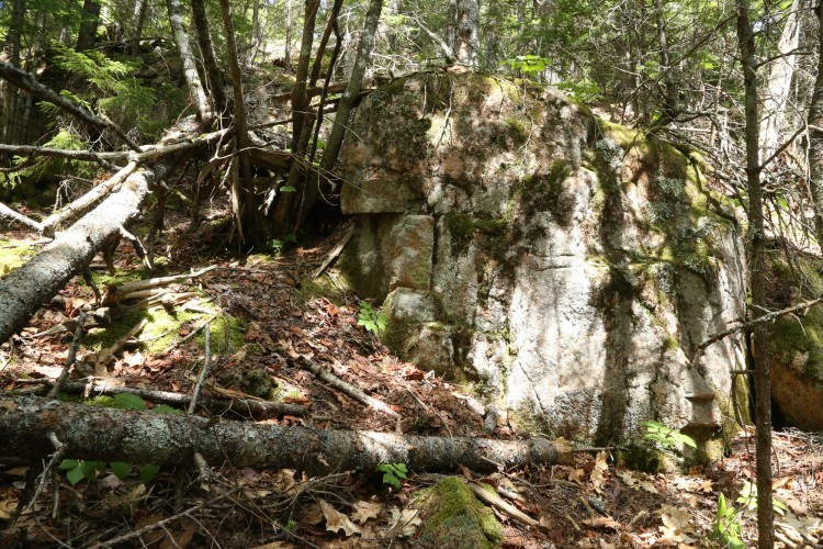 Stone ledge in the woods, is Psilolechia lucida habitat.