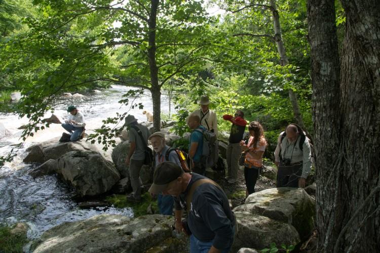 Crusose lichen class at Sprague Fall.