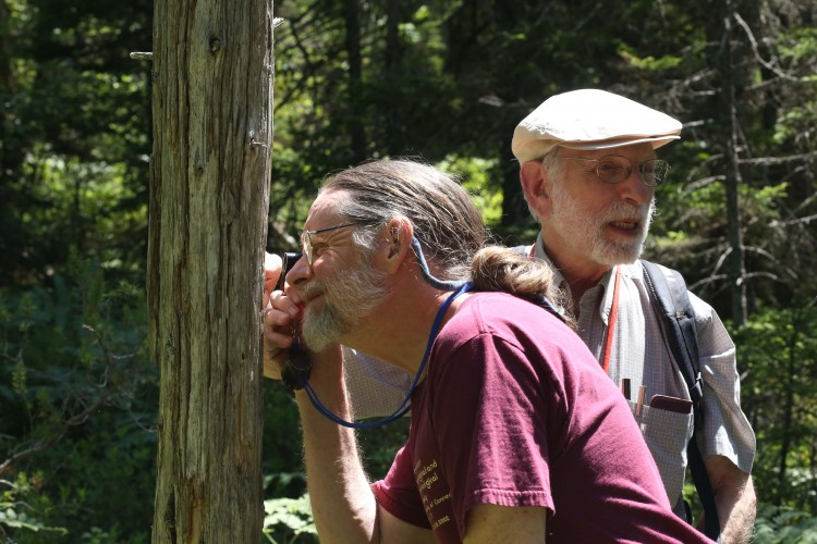 Stephan looks at tree.